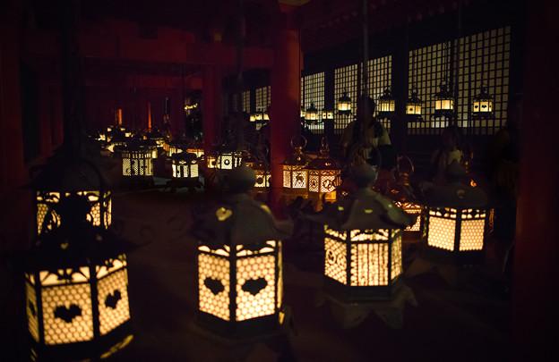 写真: Kasuga815-07958