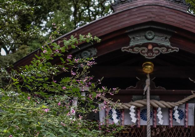 梨木神社DSC05668_ed