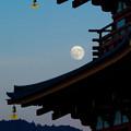 写真: Suzaku-moon-09683