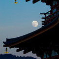Photos: Suzaku-moon-09683