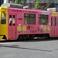 Photos: 乱出舞羽