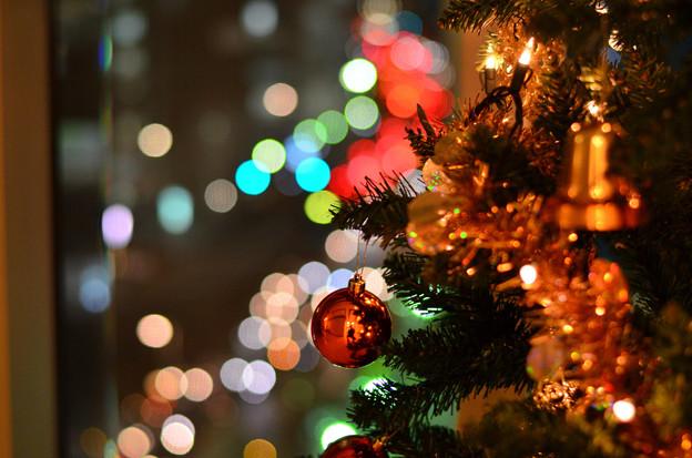 たまたまメリークリスマス