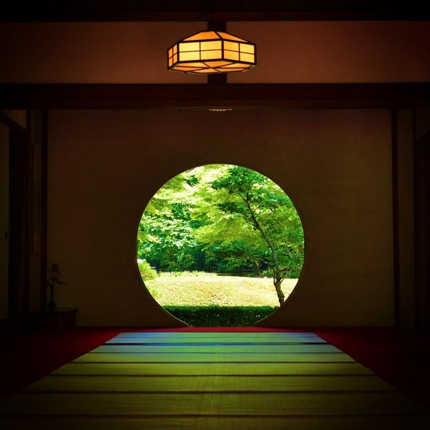 Photos: 今日、鎌倉へ行ってきました・・・(*´з`)
