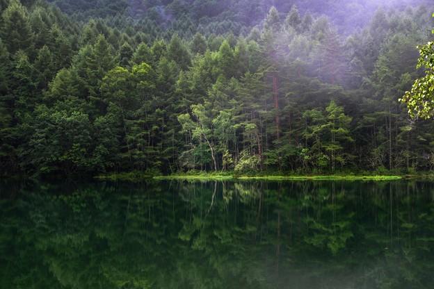 Photos: 日本の夏・・・御射鹿池の夏