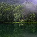 写真: 日本の夏・・・御射鹿池の夏