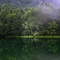 日本の夏・・・御射鹿池の夏