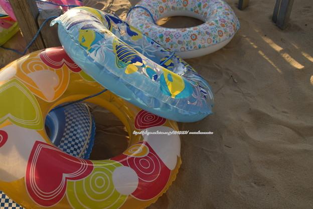 写真: 0004 浮き輪