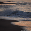 Photos: 0072 遊ぶ波