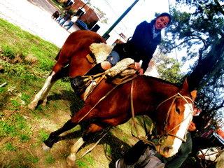 馬に乗せてもらった