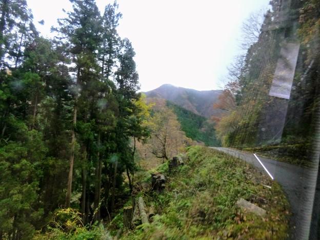 狭い山道をマイクロバスで最上部へ
