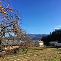 写真: 若狭瓜割名水公園からの眺め