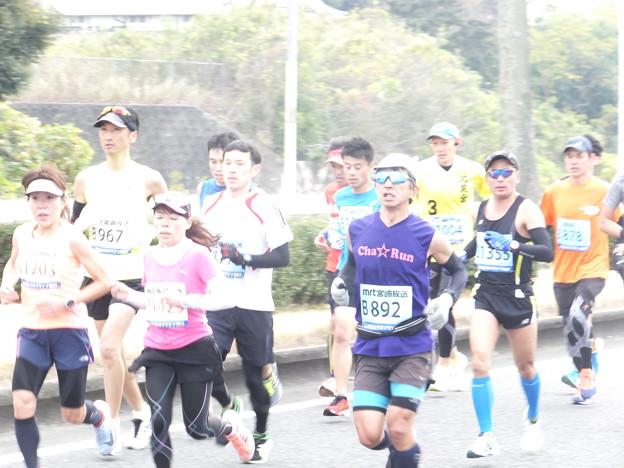 2017青太 (9)