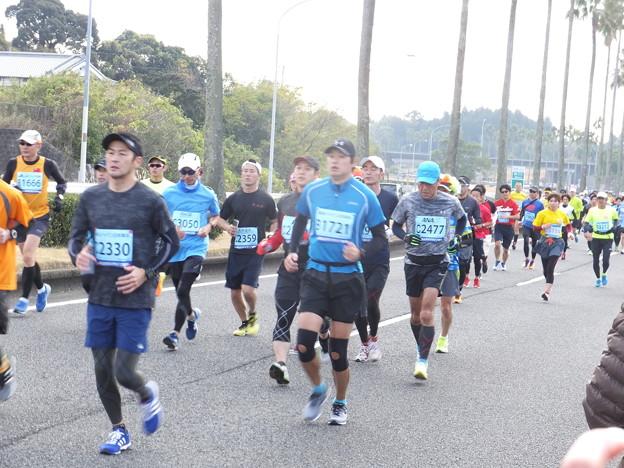2017青太 (13)