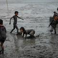 写真: 干潟体験