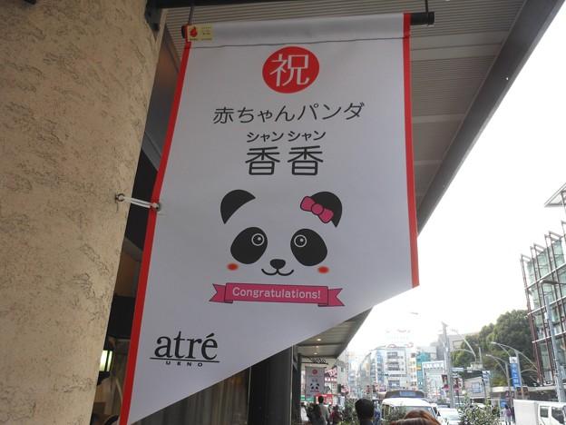 上野・香香