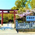 権現宮 證誠神社