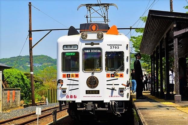 人気のたま電車