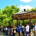 集印所へ並ぶ観光客