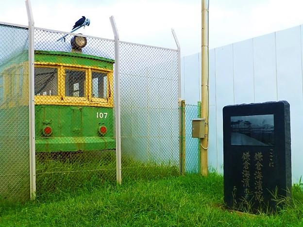 写真: 鎌倉海浜公園由比ガ浜地区