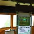 写真: 江ノ電車両  タンコロ