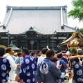 写真: 本覚寺 本堂と御御輿