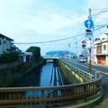 Photos: 鎌倉 神戸川