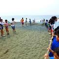 茅ヶ崎 地曳き網漁体験