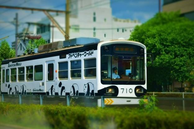 阪堺電車パンダラッピング車両