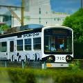 写真: 阪堺電車パンダラッピング車両
