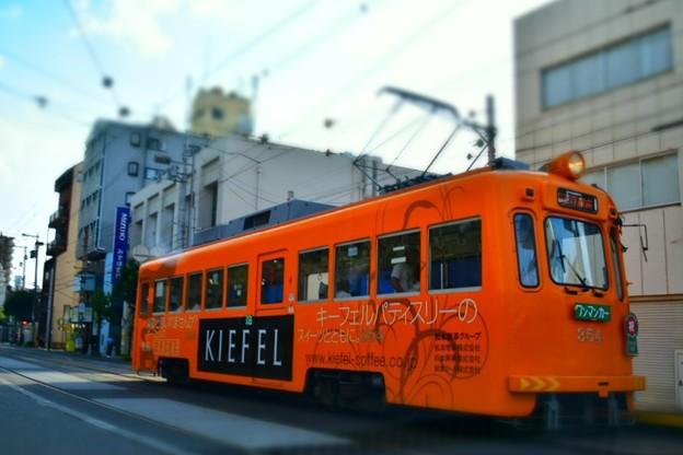 写真: 路面を走る阪堺電車