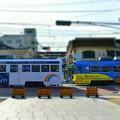 写真: 住吉大社前を通過する阪堺電車