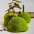 Photos: 新緑抹茶御苑