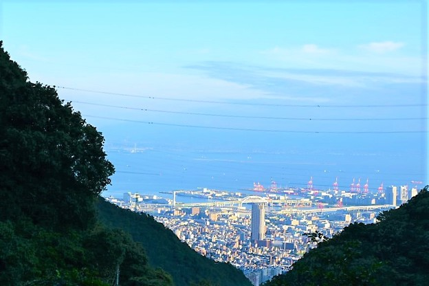 六甲山中腹からの眺め