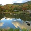 円山公園 ひょうたん池