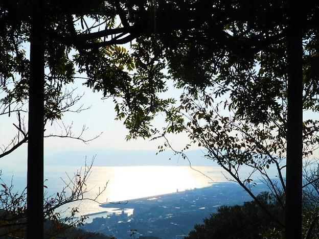 西部展望台からの海