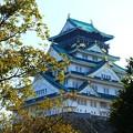 Photos: 大阪城天守閣