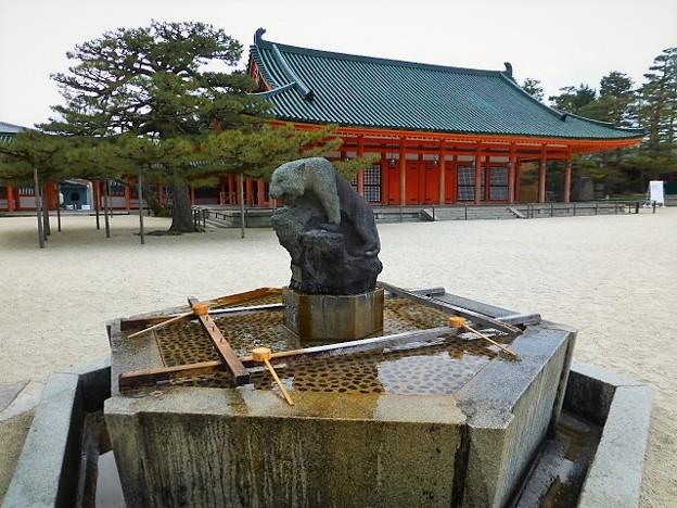 手水舎には都の西を守護する白虎の像