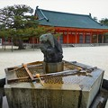 写真: 手水舎には都の西を守護する白虎の像