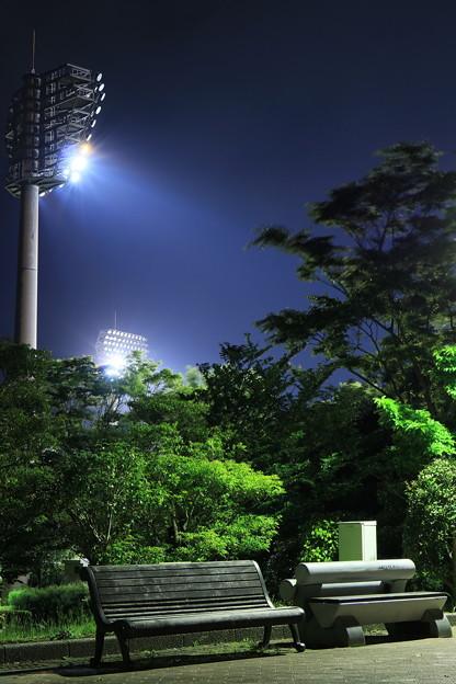 写真: 寂しい夜