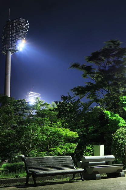 Photos: 寂しい夜