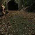 写真: トンネルを抜けると