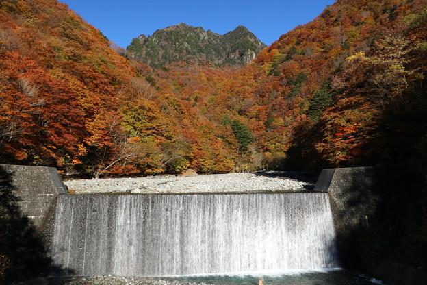 Photos: 晴天の彩り