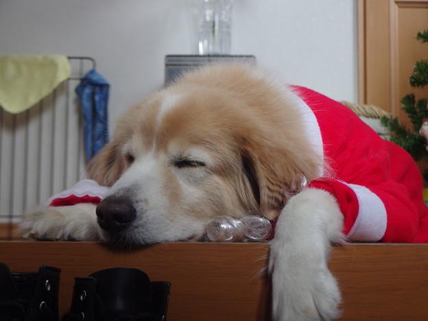 サンタクロース疲れました・・・