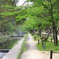 写真: 夙川