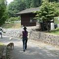 写真: 2009 北軽 292