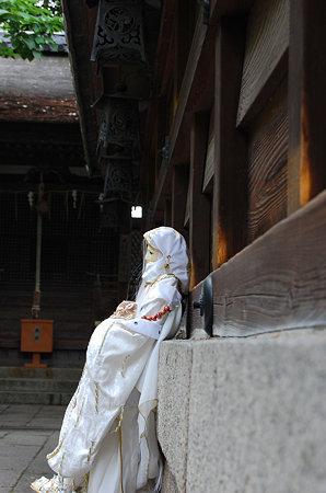 孤独2 墨染藤森神社