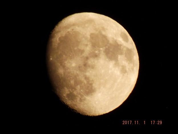2017/11/01(水)のお月様