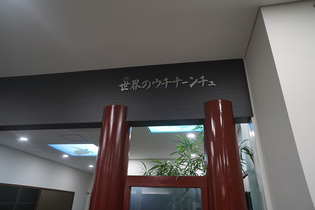 写真: DSC00203