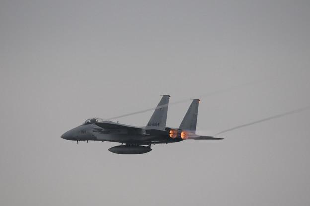 浜松基地航空祭2009_012