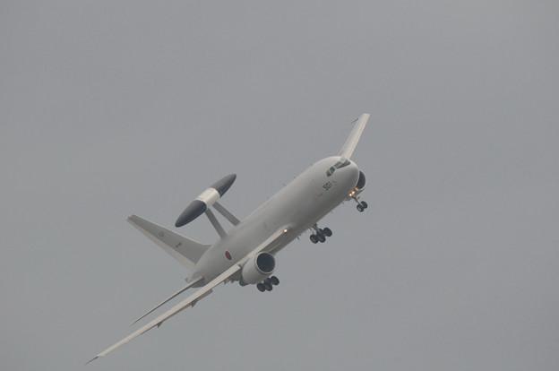 浜松基地航空祭2009_006